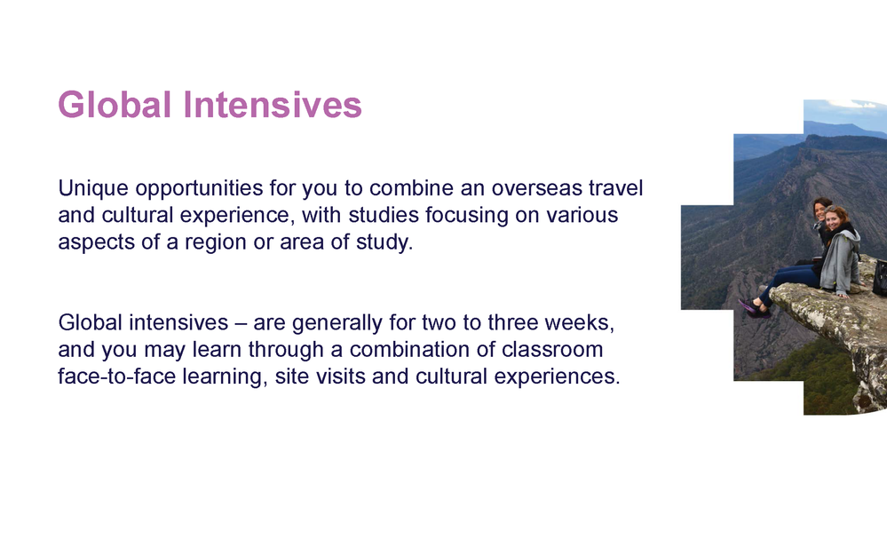 Global Intensives_Page_04.png